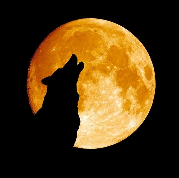 superbloodwolfmoon